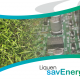Liquen savEnergy en Digital Signage World